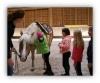 Ranch Erlebnis für Kinder